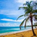 Book din rejse til Gran Canarias smørhul